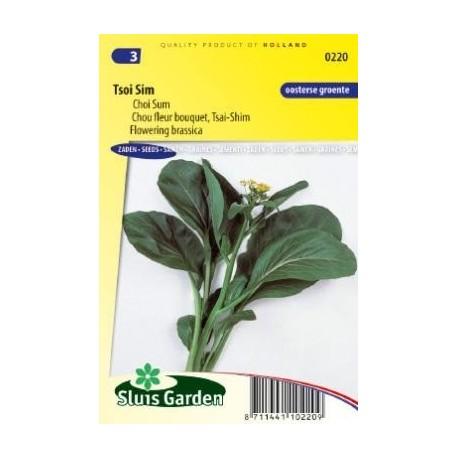 Tsoi Sim / Choi Sum - semillas