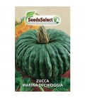 calabaza marina di chioggia - semillas