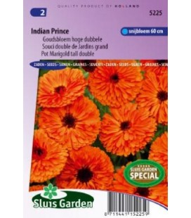 calendula principe indio (Calendula officinalis)