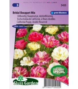 Amapola de California ramo de novia mix (Eschscholzia californica)