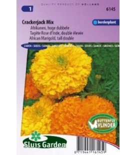 tagete Crackerjack Mix (Tagetes erecta)
