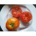 tomate nepal
