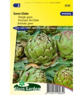 alcachofa verde globo