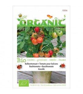 tomate colgante koralik (semillas ecologicas)