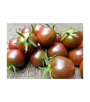 tomate cereza negra (semillas ecológicas)