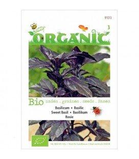 albahaca rosie (semillas ecologicas)