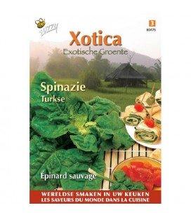 espinaca turca