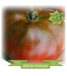 tomate Black Aisberg