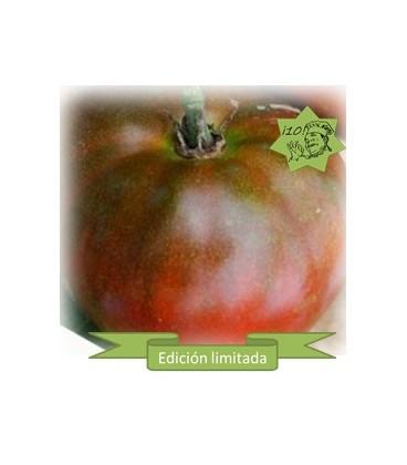 semillas de tomate Black Aisberg