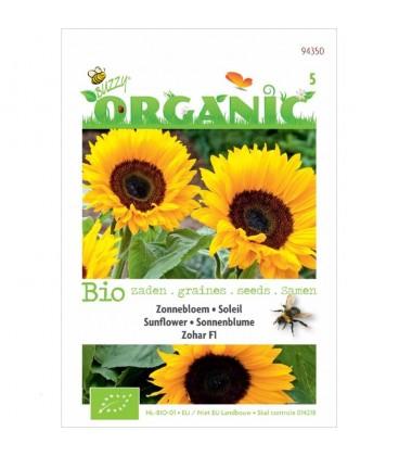 girasol zohar F1 (semillas ecológicas)