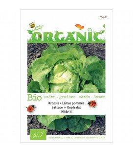 lechuga hilde (semillas ecológicas)