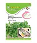 semillas de rábano daikon para germinados