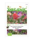 guisante de olor painted lady (Lathyrus odoratus) semillas ecológicas