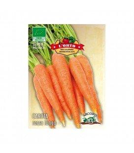zanahoria roja ottusa (semillas ecológicas)