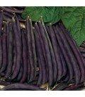 judia purple queen (semillas ecológicas)