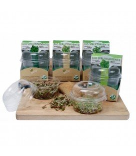 kit de germinado ecológico de soja