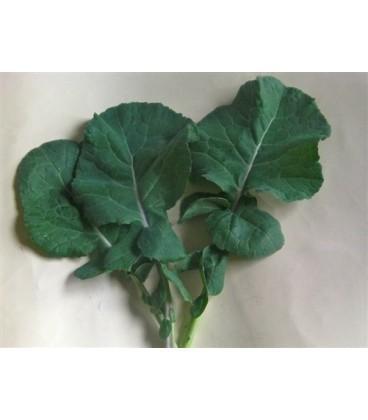 kale esparrago (semillas ecológicas)