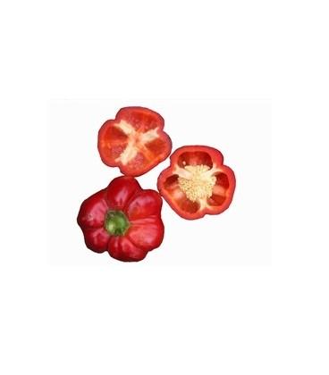 pimiento Liebesapfel (semillas ecológicas)