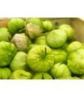 tomatillo gigante verde plaza latina (semillas ecológicas)