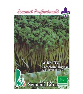 berro de jardín - lepidium sativum - semillas ecológicas