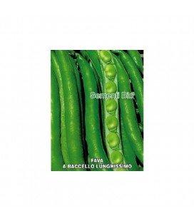 haba supersimonia valenciana (smeralda)- semillas ecologicas