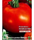tomate marglobe - semillas ecológicas