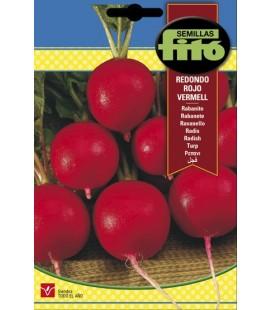 rabanito redondo rojo Vermell
