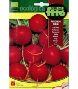 rabanito redondo rojo Vermell - semillas ecológicas