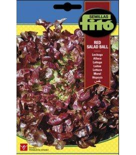lechuga hoja de roble (red salad bowl)