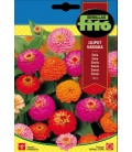 zinia (zinnia lilliput mix)