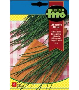 cebollino (Allium schoenoprasum)