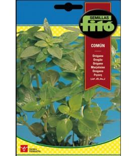 oregano común (origanum officinalis)
