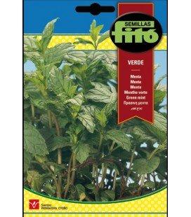 menta verde (Mentha piperita)