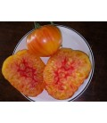 tomate Hillbilly (semillas ecológicas)