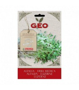 alfalfa para germinar geo