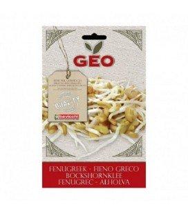 fenogreco para germinar geo