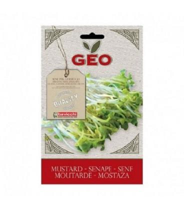 mostaza para germinar geo