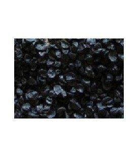 cebolla para germinados (semillas ecológicas)
