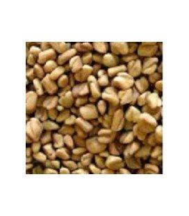 fenogreco para germinados (semillas ecológicas)
