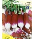 semillas de rabanito largo de punta blanca