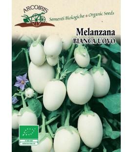 berenjena blanca huevos blancos - semillas ecologicas