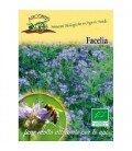 Facelia (Phacelia tanacetifolia) semillas ecológicas