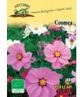 semillas de cosmos