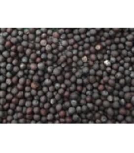 mizuna roja - semillas para germinados