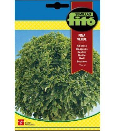 albahaca de hoja fina - semillas Fitó