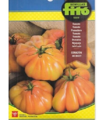 tomate corazón de buey - semillas Fito