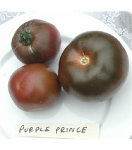 Tomate principe negro (Semillas no tratadas)