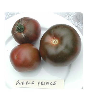 Tomate Black prince (Semillas Ecológicas)