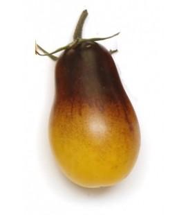 tomate Indigo Pear Drops