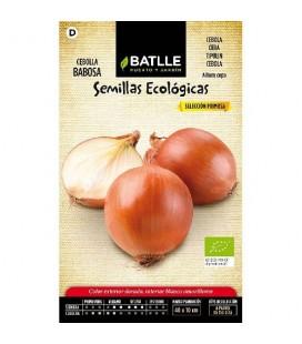 cebolla babosa - semillas ecológicas
